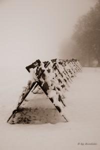 Sneeuwhekken in de mist. Locatie: Opatov na Morava
