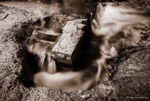 De loop van het water.  Locatie: Waterloopbos (Noordoostpolder)